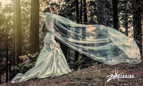 Pine Rose Arrowhead Wedding - Zook Photography