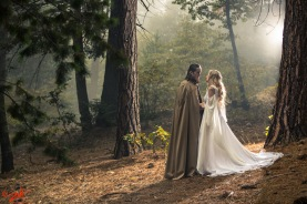 lordoftheringsforestwedding00000